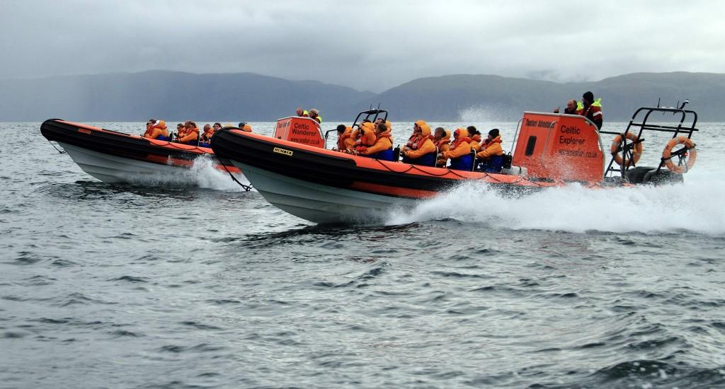Seafari Adventures Open RIBs.